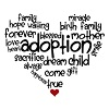 Adoption helps many Rutherford County residents become a family