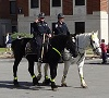 Increased patrol on horseback in Murfreesboro