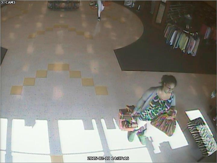 Three shopping carts of shoes stolen in Murfreesboro