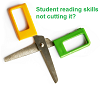 For Teachers: Improving student reading skills in school