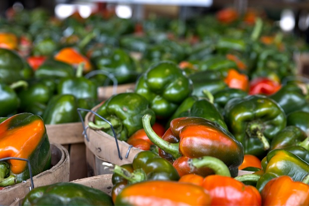 Producer only Farmers Market in Murfreesboro OPEN this Tuesday and Friday