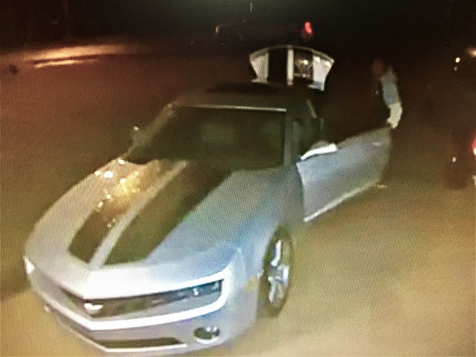 Smyrna Auto Burglary in
