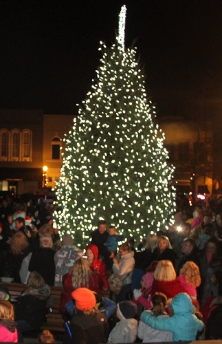 Christmas Arrived With Friday Night's TREE LIGHTING