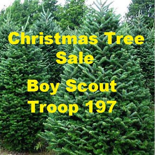 Boy Scout Troop 197 Christmas Tree Sale