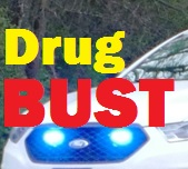Drug Bust In Neighboring Wilson County