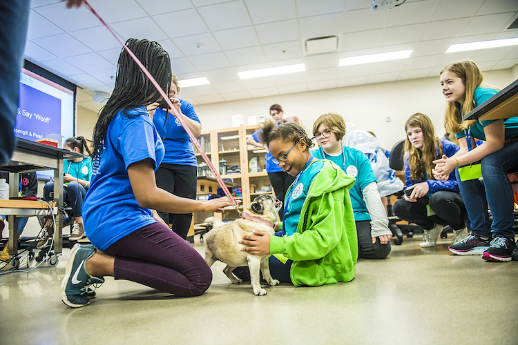 Registration continues for girls' Oct. 27 math-science event at MTSU