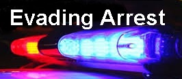 5 Outstanding Warrants + Evading Arrest