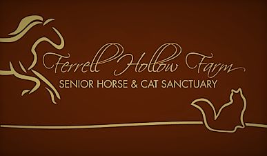 2019 FALL FESTIVAL at the Ferrell Hollow Farm Senior Horse and Cat Sanctuary
