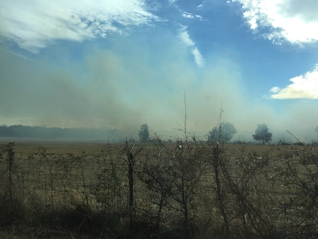Field Fire on Manchester Highway
