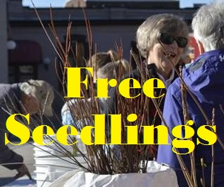 5 Free Seedlings For Landowners--Supplies Limited
