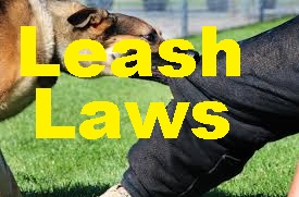 Murfreesboro Has LEASH LAWS--Dogs Can't Roam