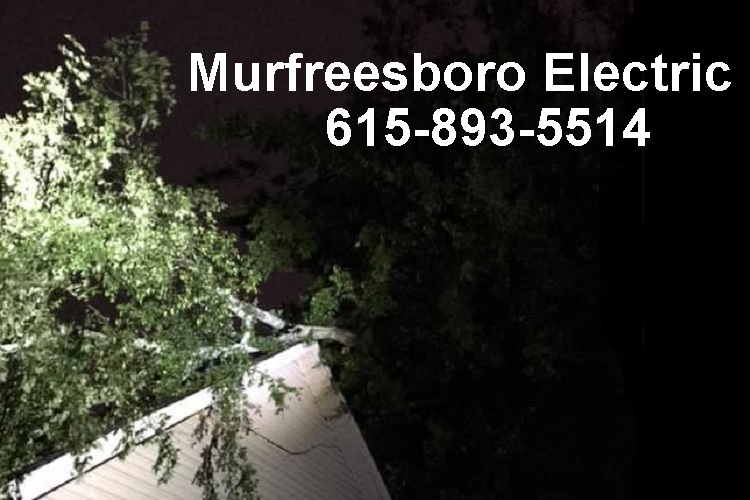 MED Offers Free Tree Pruning Near Power Lines