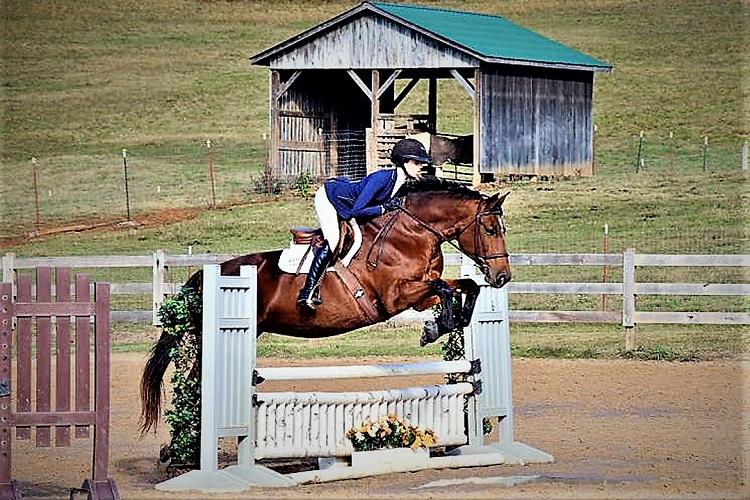 COVID-19 Rips MTSU's Equestrian Season