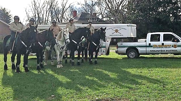 RCSO Mounted Patrol: