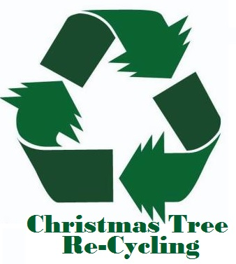 Recycle Your Cut Christmas Tree