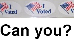 Do You Feel Convicted Felons Should Have Voting Rights?
