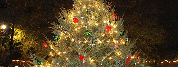 Smyrna Tree Lighting Ceremony | Tree lighting, Christmas, Smyrna news, Smyrna, NewsRadio WGNS