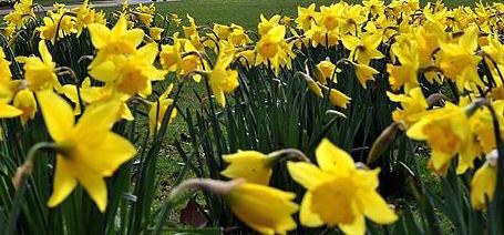 Seasons Change; Spring Arrives Friday