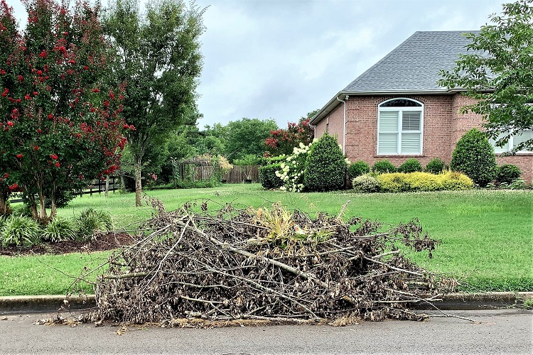 Debris Killing Grass and Safety Issue for Motorists