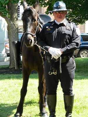 RCSO Mounted Patrol Loses Devoted Member