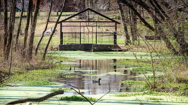 Oaklands Mansion Wetlands Tour April 8th
