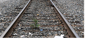 Homeless Man Killed By Train In Murfreesboro
